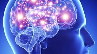NEUROEPO: препарат с терапевтическим действием при некоторых воспалительных заболеваниях головного мозга.
